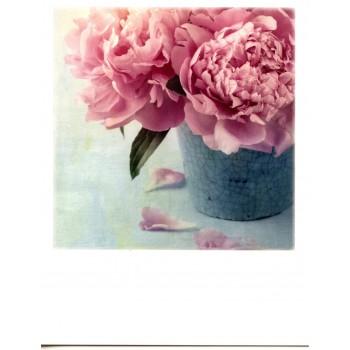 12-014 - TAURUS - POLA CARD